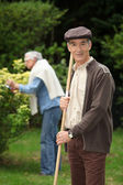 Senior couple raking leaves in the garden — Stock Photo