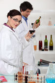 Oenologists analysing wine — Stock Photo