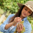 Woman with bunch of grapes - Stock Photo