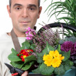 Florist holding flower arrangement — Stock Photo