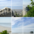 Montage of coastal scenery — Stock Photo