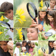 Family with magnifying glass nature spotting - Stock Photo