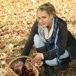 Woman in woods picking up chestnuts — Stock Photo