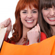 Stock Photo: Two female friends with shopping bags