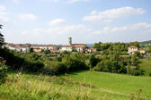 Village surrounded by greenery — Stockfoto