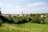 Yeşilliklerle çevrili köyü — Stok fotoğraf