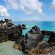 Stock Photo: Rugged BermudRocks