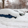 Cars Covered in Snow — Stock Photo