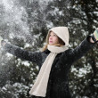 Winter time — Stock Photo #8885948