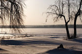 Winter landscape with trees on the shore — Стоковое фото