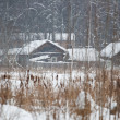 Cottage on the bank, snowstorm — Stock Photo