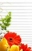 Bouquet of tulips, gerberas, greenery, wild flowers — Stock Photo
