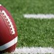 Football on the Field Close Up — Stock Photo #10697442