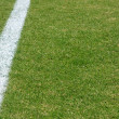 Soccer Field Line on Natural Grass — Stockfoto