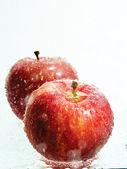Mokrá jablka — Stock fotografie
