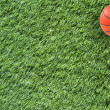 Basketball on grass background and texture — Stock Photo