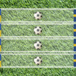 Foto Stock: Plasticine Football flag on grass background for score (Group D)