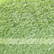 Royalty-Free Stock Photo: Green grass texture and background