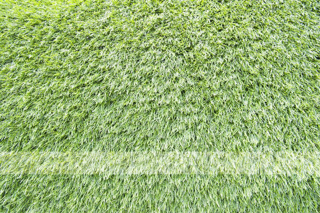 Green grass texture and background — Stock Photo #10716995