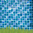 Green grass and Blue water in Swimming pool — Stock Photo