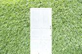 Puerta blanca sobre fondo verde hierba — Foto de Stock