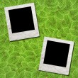 Royalty-Free Stock Photo: Photo Frame green leafs for background