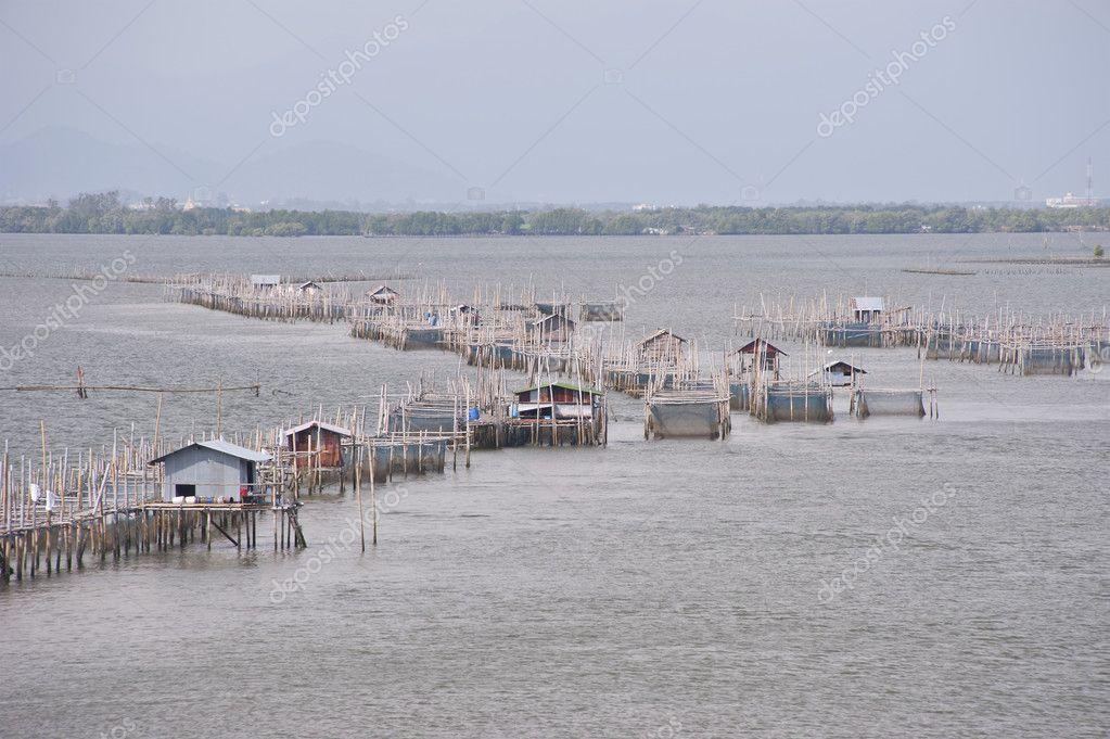 Chanthaburi Thailand  City pictures : Fish farms in chanthaburi,Thailand — Stock Photo © jumpe #9977302