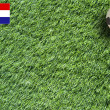 Plasticine Football on grass background — Stock fotografie