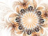 Soft beautiful flower, fractal design — Stock Photo
