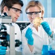Laboratory — Stock Photo