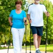 Senior couple making nordic walking — Stock Photo