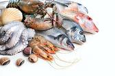Pescato fresco — Foto Stock