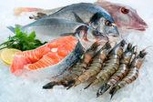 Mořské plody na ledě — Stock fotografie