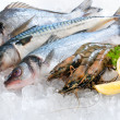 Seafood on ice — Stock Photo #9177868