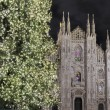 Christmas Tree and Cathedral, Milan - Stock Photo