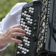 The musician plays an old accordion — Stock fotografie