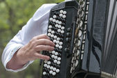 The musician plays an old accordion — Stock Photo