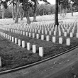 SF Military Cemetery — Stock Photo