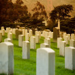 SF Military Cemetery — Stock Photo #8394812