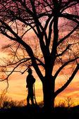 William Tecumseh Sherman Statue silhouette — Stock Photo