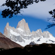 Fitz roy mountain and glaciers 2 — Stock Photo