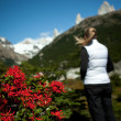 Stock Photo: Red flowers and womin mountains