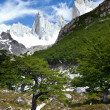 Stock Photo: Fitz roy mountain landscape 6
