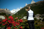 Red flowers and woman in the mountains — Stock Photo