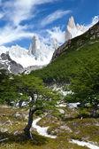 Fitz roy dağ manzarası 6 — Stok fotoğraf