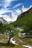 Fitz roy mountain landscape 6 — Stock Photo