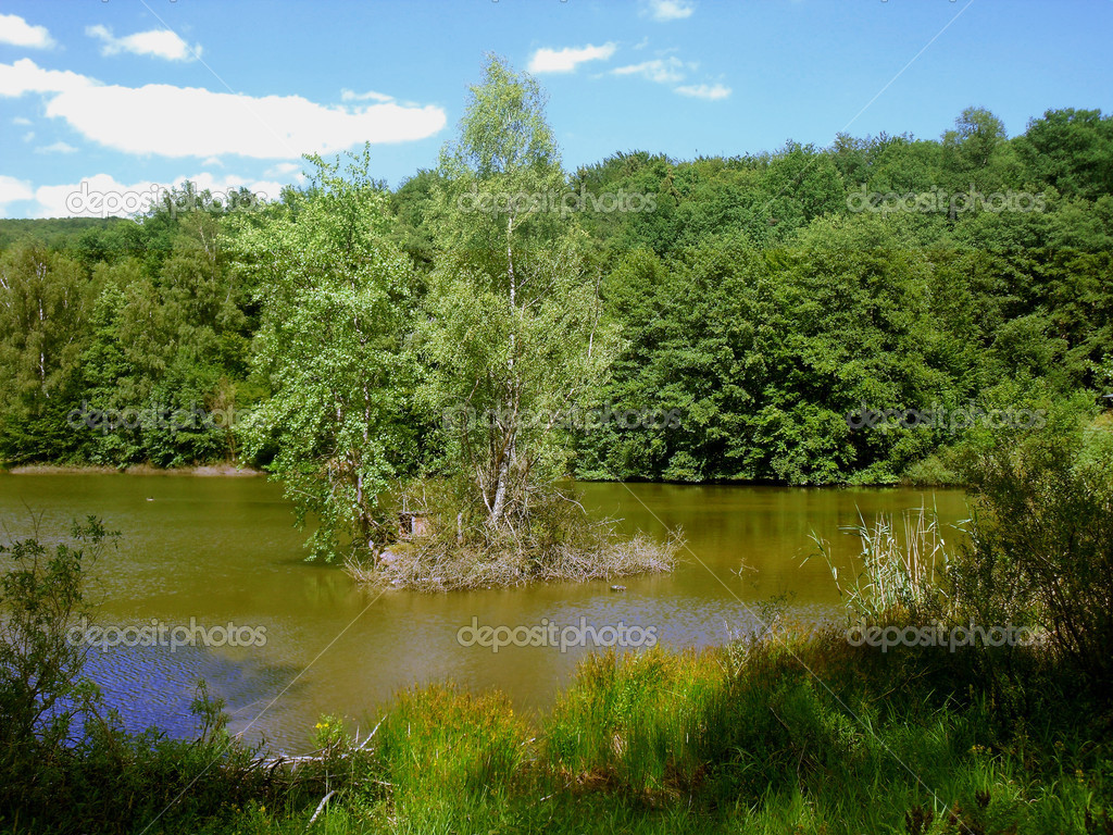 View to an idyllic fishing pond with a small island for ducks. The Hirschborn ponds are located in the Spessart nature park. — Stock Photo #8197590