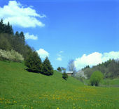 Meadow in a valley in the spring — Stock Photo