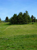 Large meadow on a hillside also for your Compositing — Stock Photo