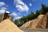 Storage of wooden fuel against blue sky — Stock Photo